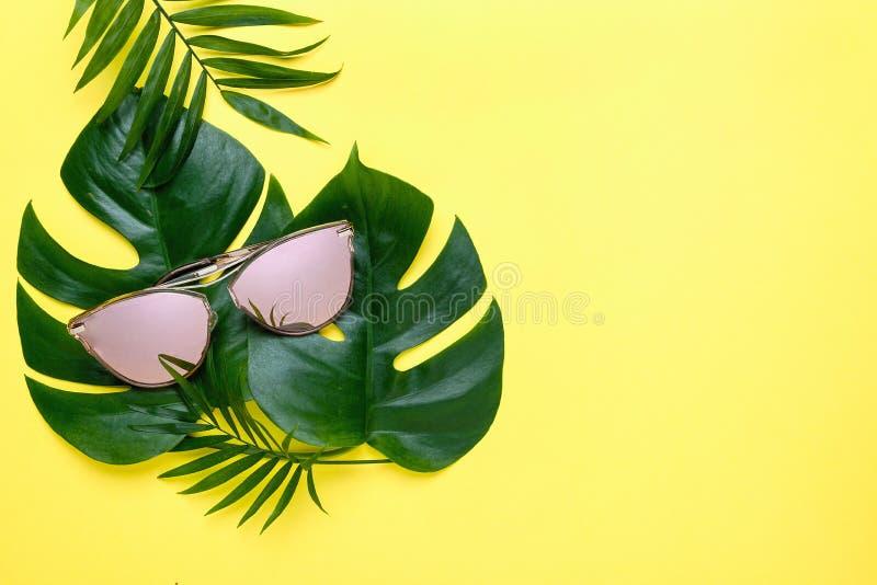 Composição de folhas de palmeira tropicais, Monstera do verão fundo amarelo com vidros cor-de-rosa Conceito - férias de verão ilustração do vetor