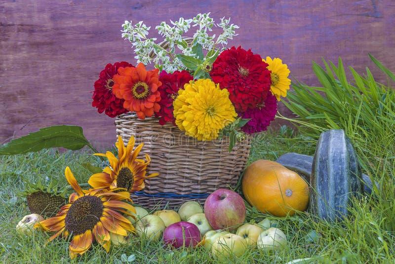 Composição de jardinagem do verão bonito imagem de stock