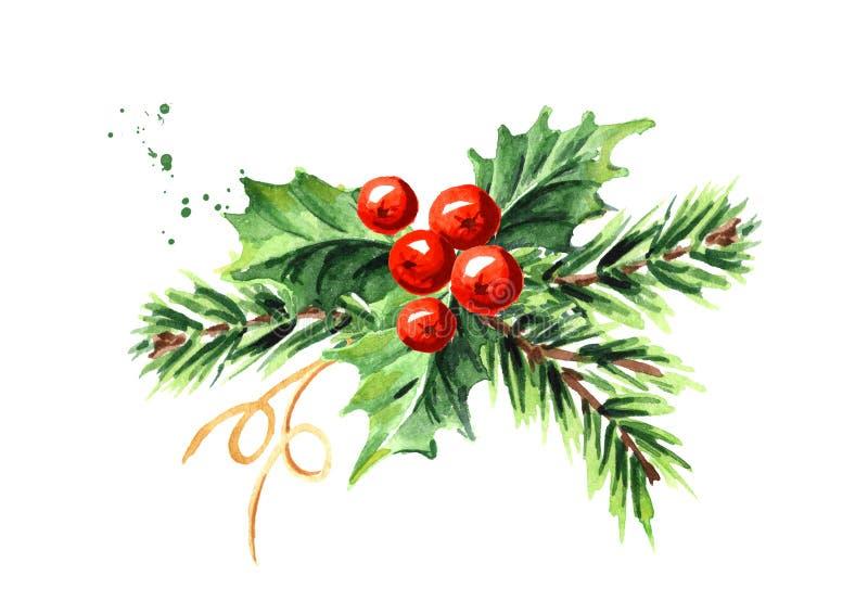 Composição decorativa da baga do azevinho do símbolo do Natal e do ano novo e do ramo do abeto Ilustração tirada mão da aquarela, ilustração do vetor