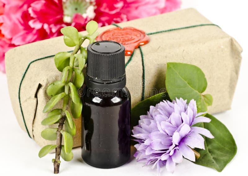 Composição do óleo aromático com ervas e flores imagem de stock royalty free