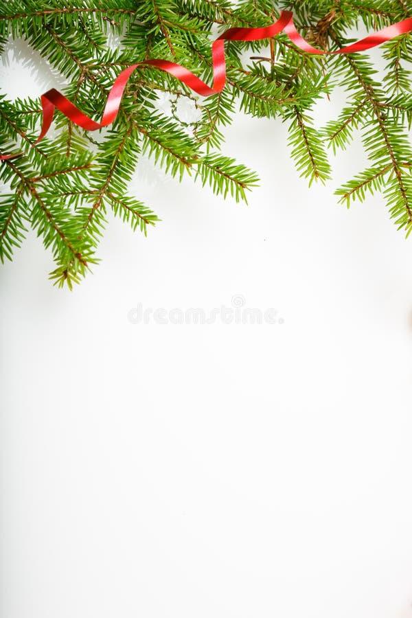 Composição do feriado do Natal e do ano novo Ramo e fita de árvore do Natal em um fundo branco fotos de stock royalty free