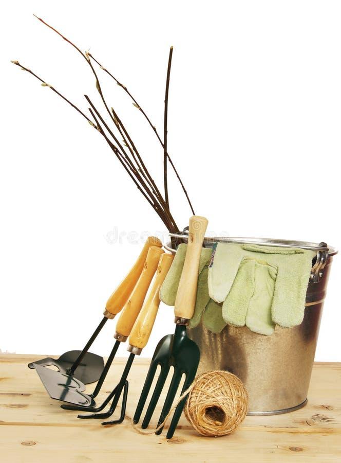 Composição do jardim com as plântulas e as ferramentas isoladas sobre o branco imagens de stock royalty free
