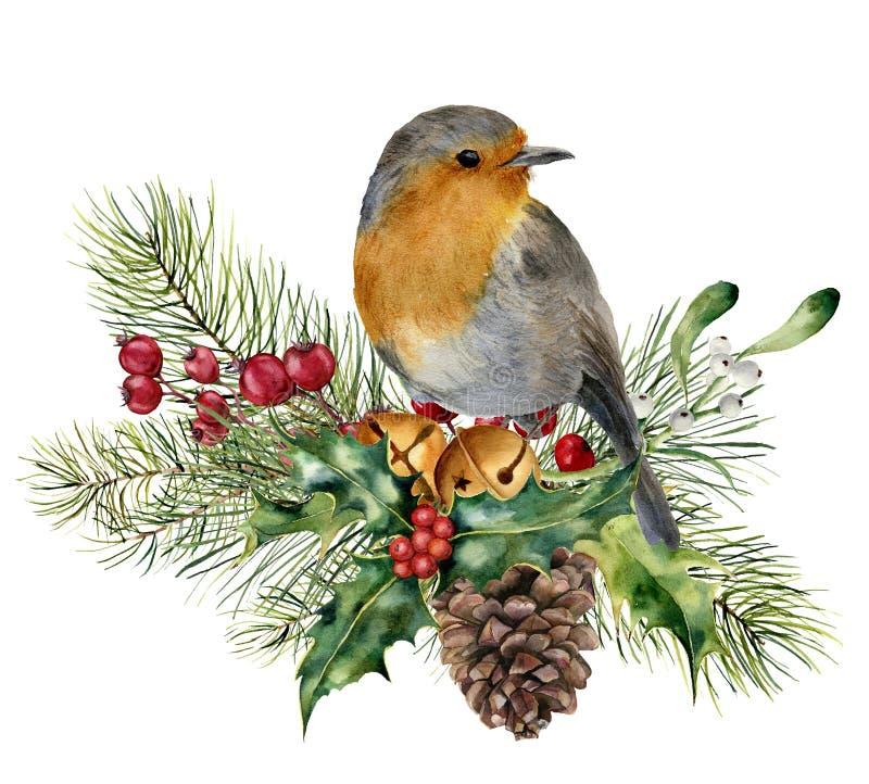 Composição do Natal da aquarela com pássaro O pisco de peito vermelho pintado à mão com abeto e a baga ramificam, visco, azevinho ilustração do vetor
