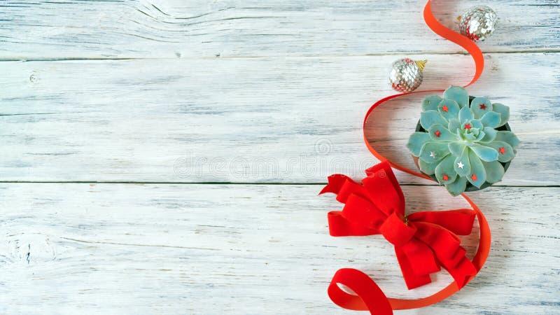 Composição do Natal, modelo com a planta suculento do aloés verde do cacto fotos de stock