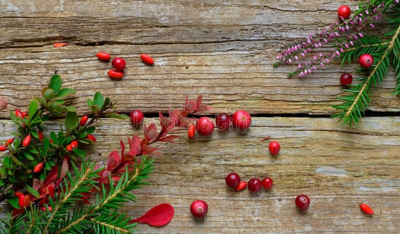 Composição do Natal no fundo de madeira imagem de stock royalty free