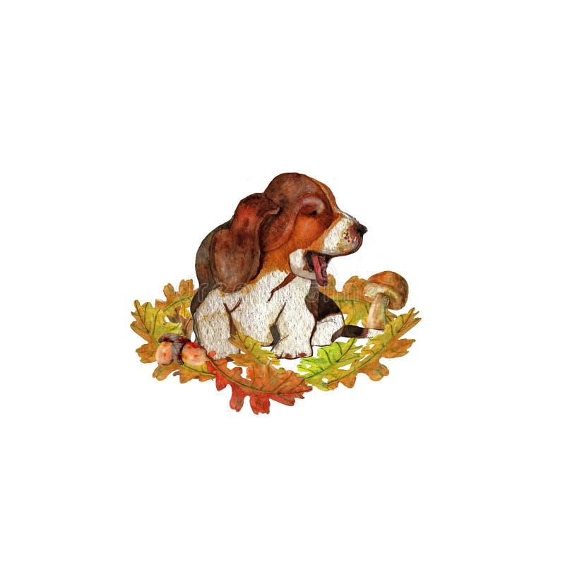 Composição do outono com as folhas bonitas do cão ilustração royalty free