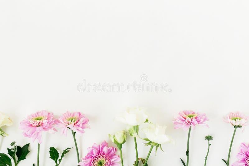 Composição do ` s do Valentim com fundo cor-de-rosa do branco das flores e das rosas Configuração lisa, vista superior fotos de stock