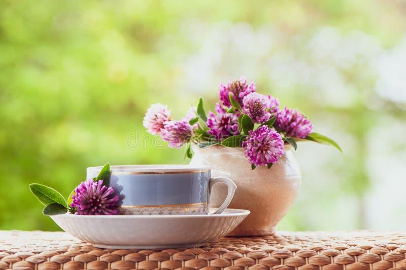 A composição do verão de Ð'eautiful de um copo do chá e do trevo floresce imagem de stock royalty free
