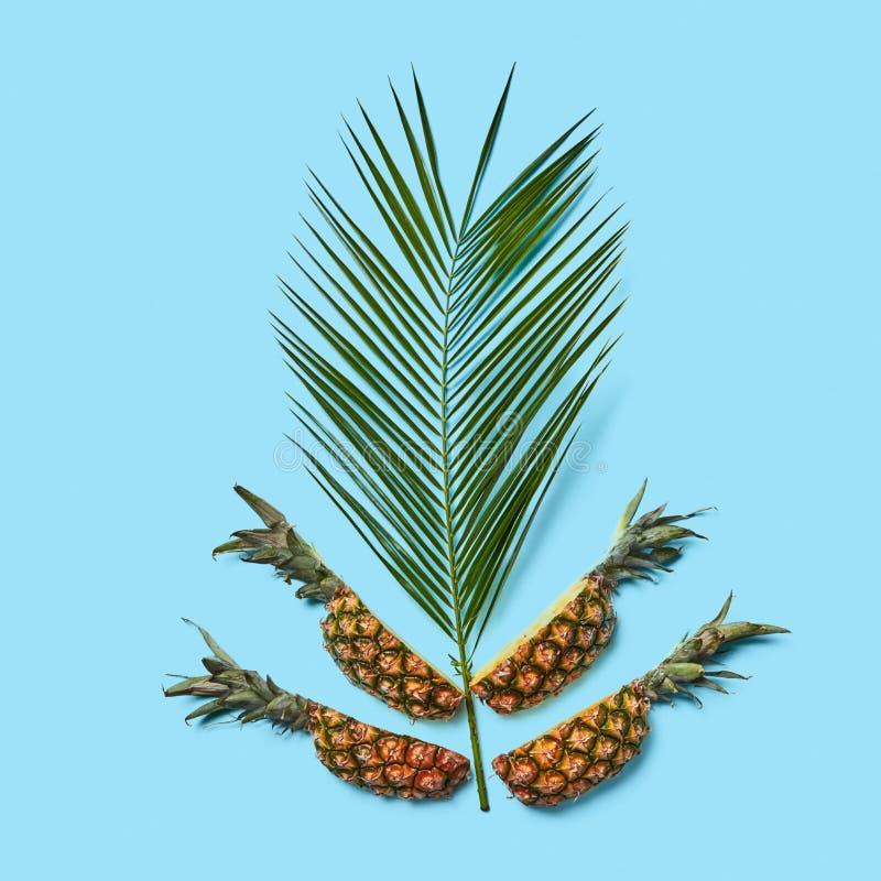 Composição do verão de uma folha de palmeira tropical e fresco criativos ou imagem de stock royalty free