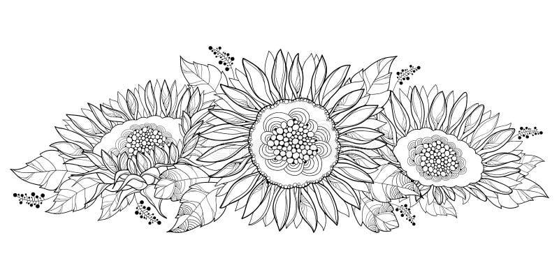 Composição do vetor com o girassol do esboço ou flor aberta e folhas do Helianthus isolado no fundo branco Elementos florais ilustração royalty free