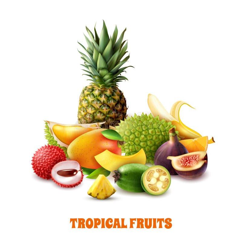Composição exótica dos frutos tropicais ilustração royalty free