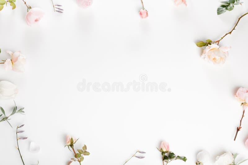 Composição festiva da flor no fundo de madeira branco Vista aérea fotos de stock royalty free