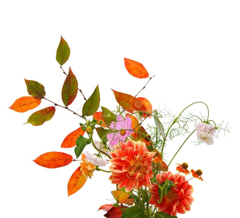 Composição floral do outono fotografia de stock