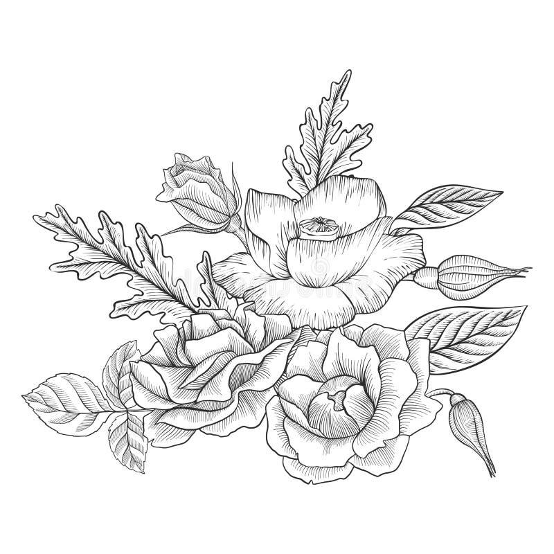 Composição floral do vetor do vintage ilustração royalty free