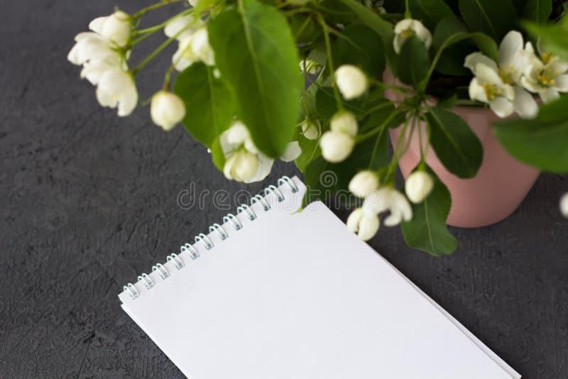 Composição floral em um dia de mola Ramos de florescência da árvore de maçã fotografia de stock