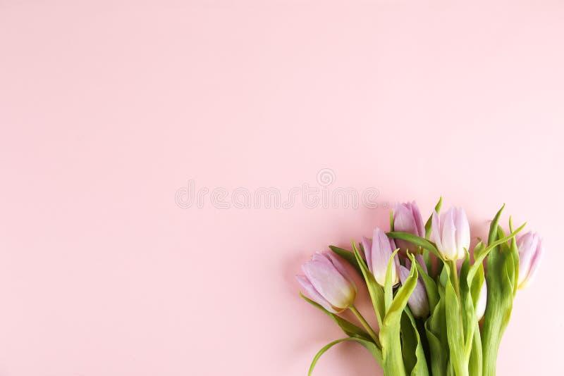 Composição floral no estilo mínimo com flores roxas foto de stock