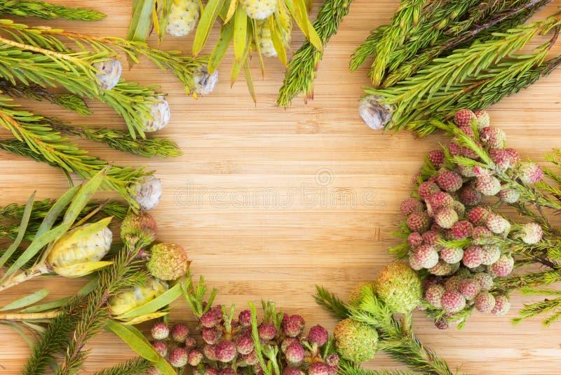 Composição floral redonda imagem de stock