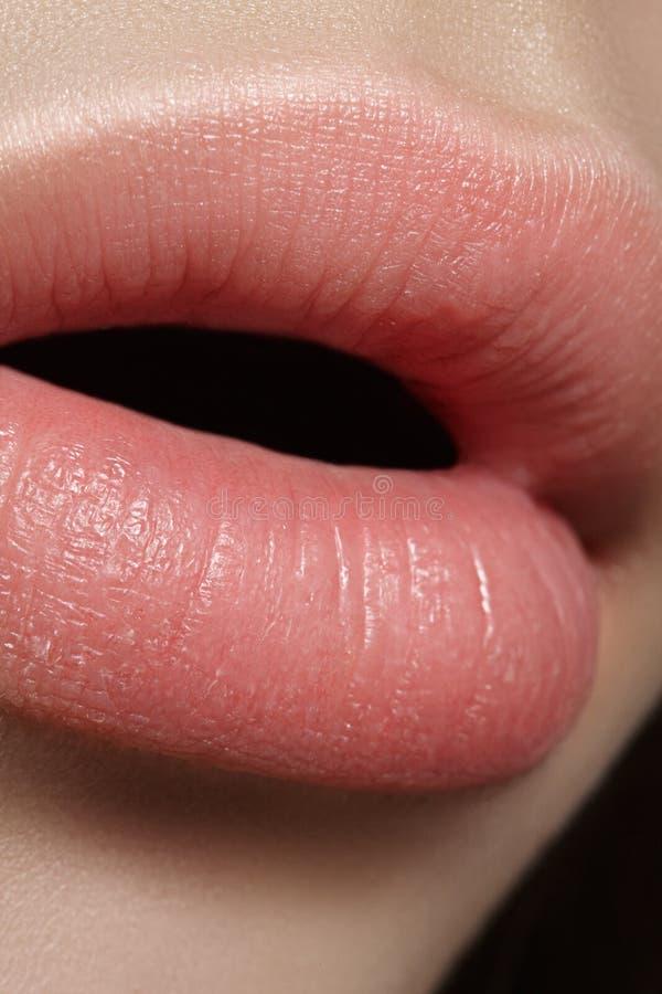 Composição natural perfeita do bordo do close up Bordos completos gordos bonitos na cara fêmea Limpe a pele, composição fresca Bo imagens de stock