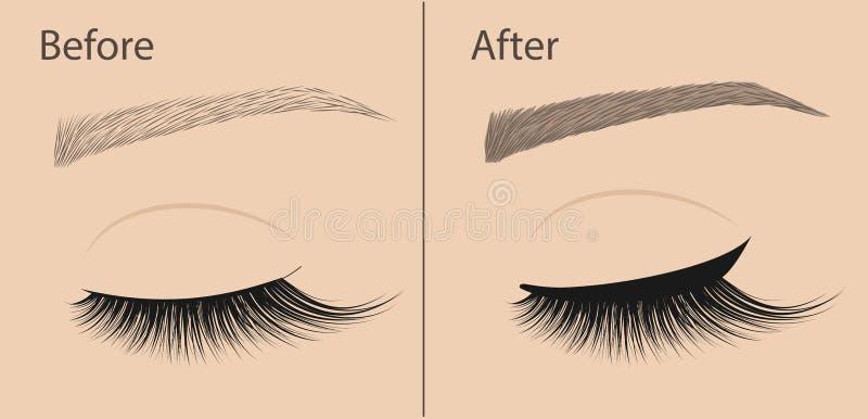 Composição permanente Lápis de olho e dar forma da sobrancelha da correção Antes e depois Procedimento do salão de beleza ilustração royalty free