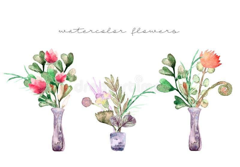 Composição pintada da aquarela das flores nas cores pastel: flores do verão, ervas, ramos, eucalipto no vaso ilustração do vetor