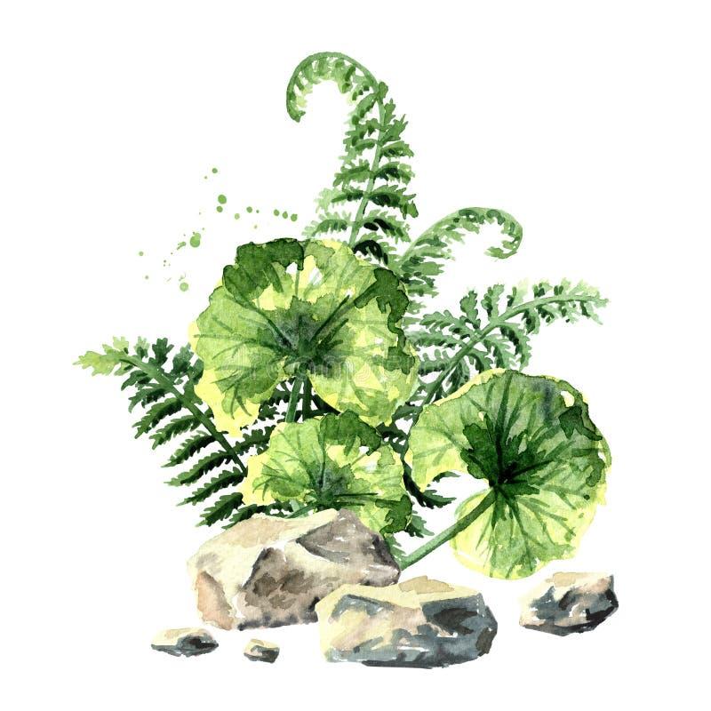 Composição pré-histórica das plantas Ilustração tirada mão da aquarela, isolada no fundo branco ilustração do vetor