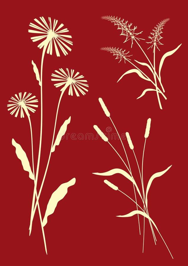 Composições florais - vetor ilustração do vetor