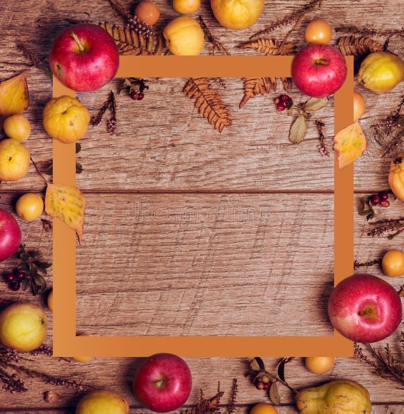 Composi??o da folha do outono com moldura para retrato Copie o espa?o fotos de stock