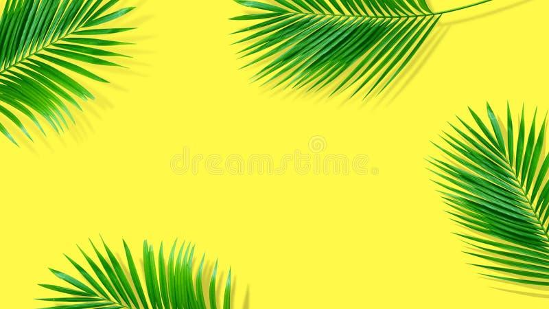 Composi??o do ver?o Folhas de palmeira tropicais no fundo amarelo ver?o fotografia de stock royalty free