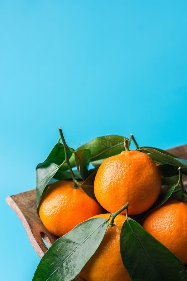 Composición botánica de la Navidad del Año Nuevo Mandarinas frescas con las hojas verdes en bandeja de madera en fondo azul Tarje fotografía de archivo