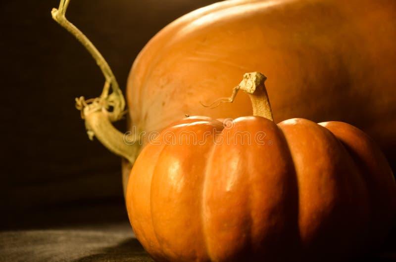 Composición con cierre de calabaza. vida fresca acogedora de otoño. Feliz Día de Acción de Gracias y concepto de Halloween. es fotografía de archivo