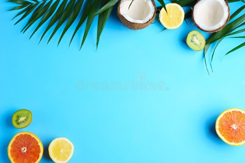 Composición con las frutas exóticas, vacaciones del verano foto de archivo