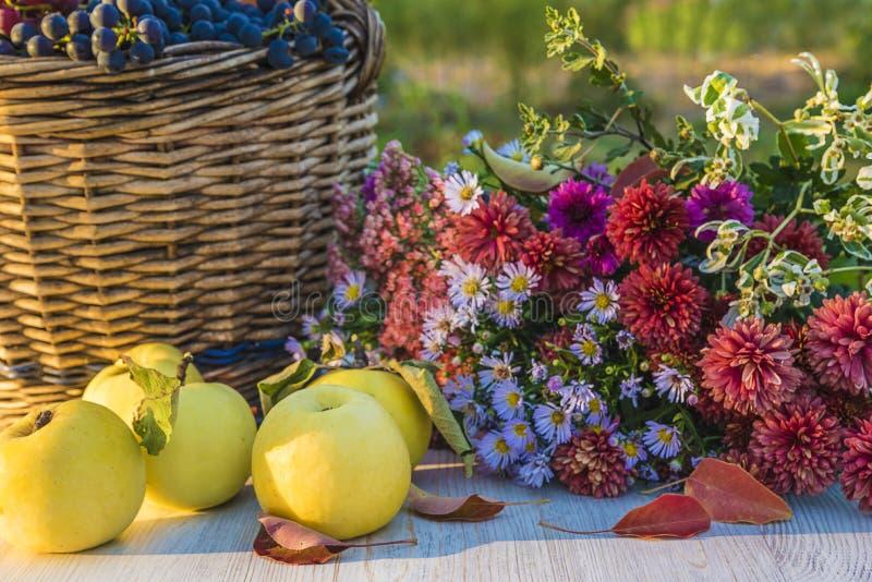 Composición con las manzanas maduras, cesta de mimbre del otoño con las uvas r foto de archivo libre de regalías