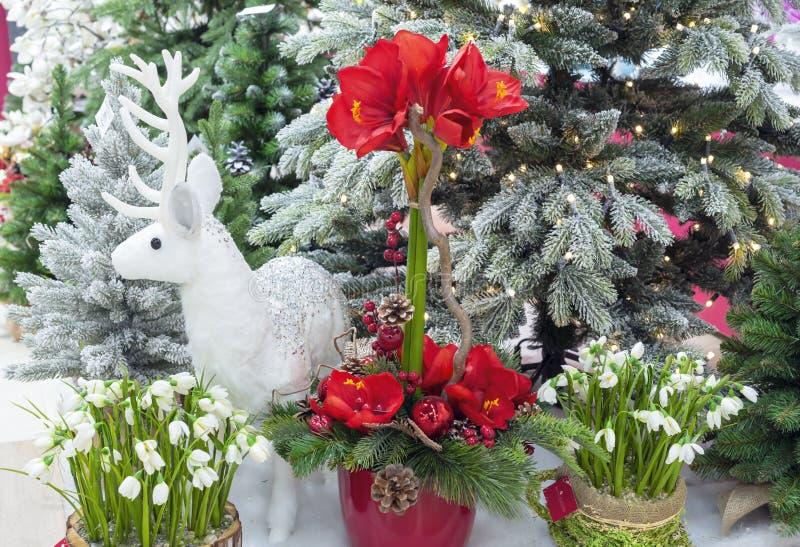 Composición con los árboles de navidad, las flores y los ciervos blancos imagen de archivo libre de regalías