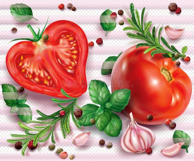Composición con los tomates e hierbas y especias aromáticas ilustración del vector