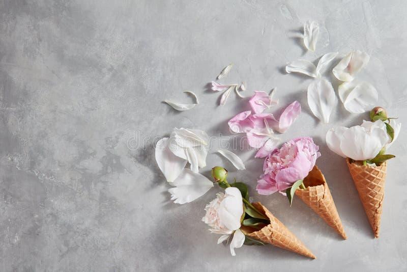 Composición creativa de las flores delicadas en conos de una oblea con los pétalos en una tabla de piedra gris Endecha plana fotografía de archivo libre de regalías
