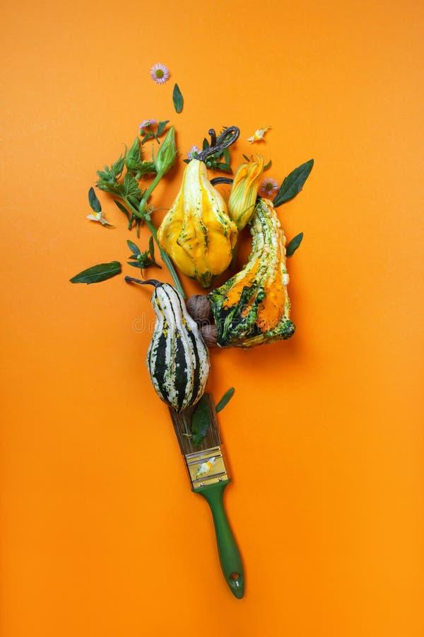 Composición creativa del otoño de calabazas imágenes de archivo libres de regalías