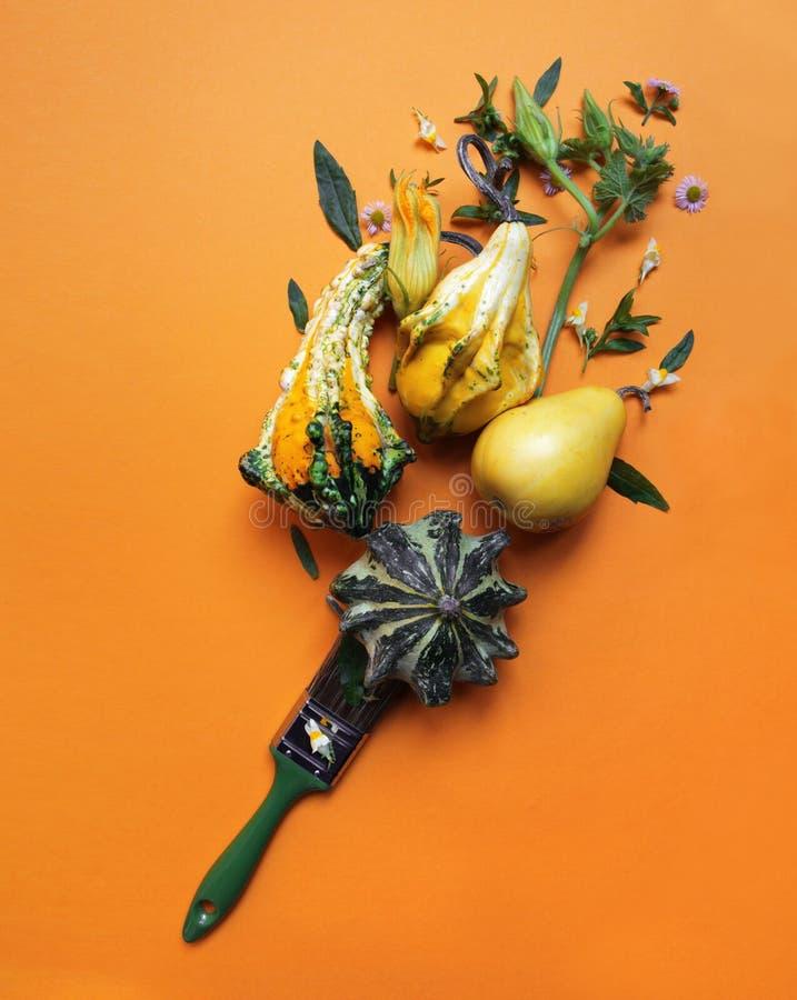Composición creativa del otoño de calabazas imagen de archivo