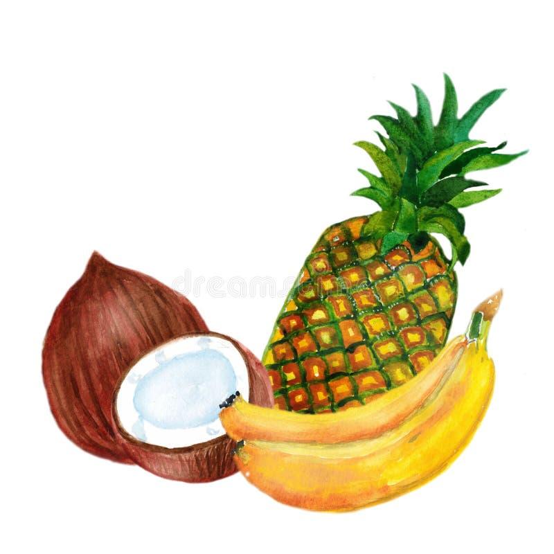 Composición de la acuarela con las frutas tropicales plátano, piña y coco aislados en el fondo blanco ilustración del vector