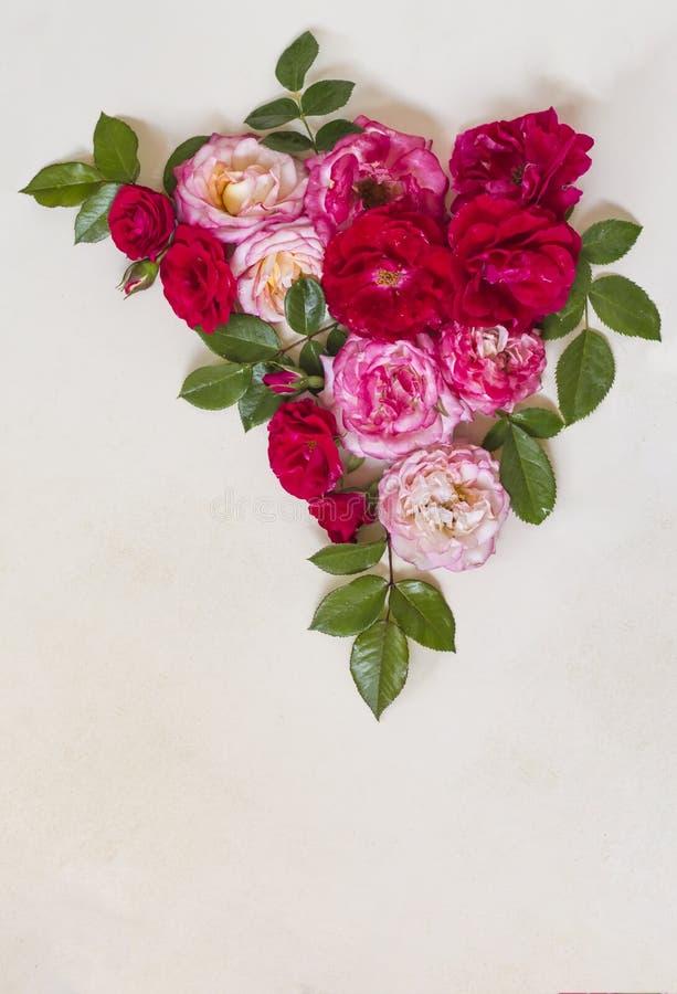 Composición de la esquina de flores color de rosa y de hojas verdes en un fondo blanco Con el espacio de la copia Endecha plana fotos de archivo libres de regalías