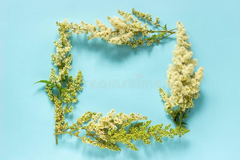 Composición de la flor Guirnalda rectangular floral de la naturaleza del capítulo de las flores blancas florecientes de la ramita fotografía de archivo