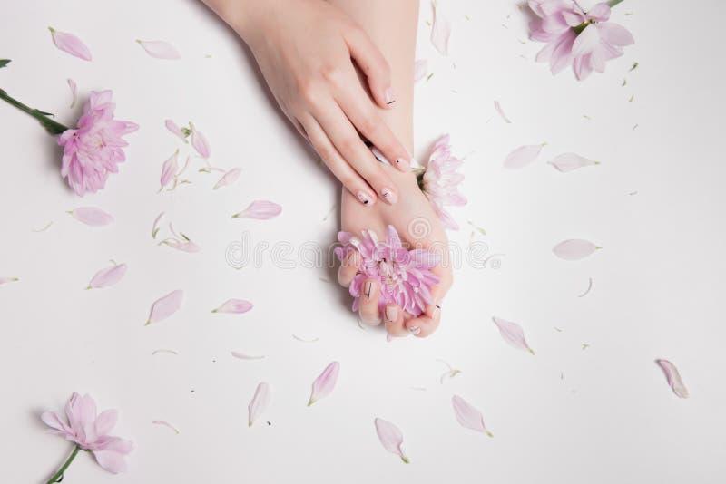 Composición de la moda Una mano femenina con la manicura ligera hermosa miente otra, que es brote de flor rosado, y los pétalos e foto de archivo