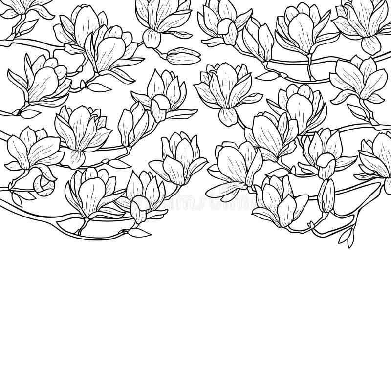 Composición de la primavera de la magnolia stock de ilustración
