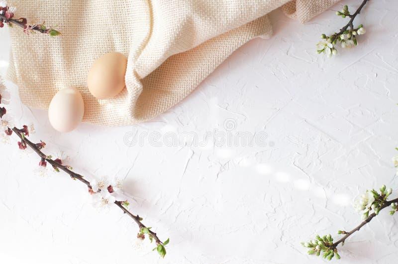 Composición de Pascua de huevos y de ramitas de un árbol con el florecimiento fotografía de archivo libre de regalías