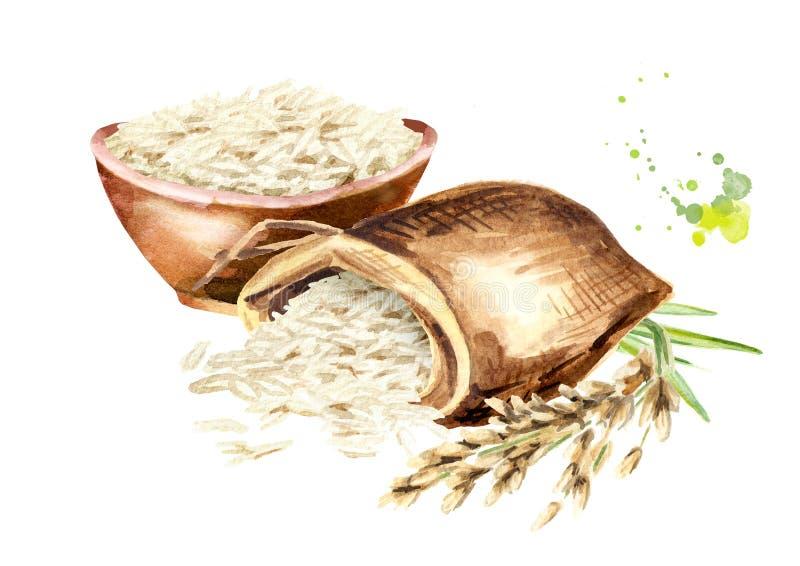 Composición del arroz blanco Ejemplo dibujado mano de la acuarela, aislado en el fondo blanco stock de ilustración