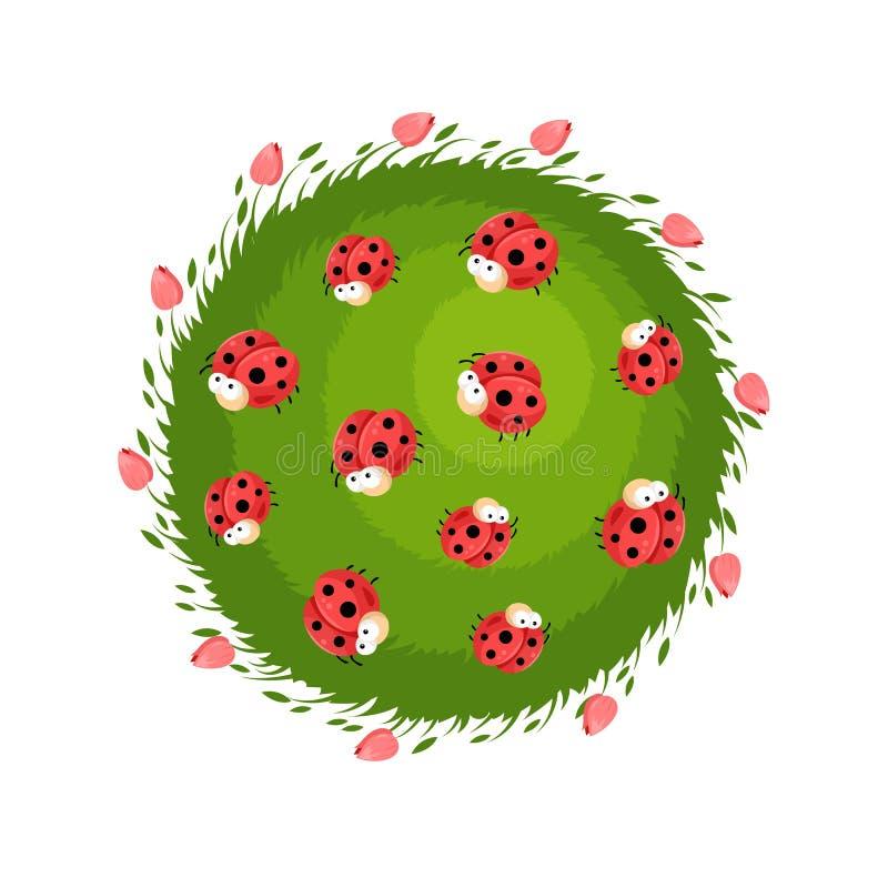 Composición del círculo con las mariquitas lindas de la historieta en la hierba con las flores rojas ilustración del vector