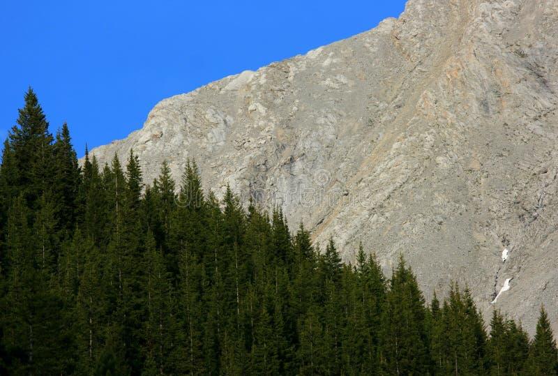 Composición del cielo, del bosque, y de la montaña fotografía de archivo libre de regalías