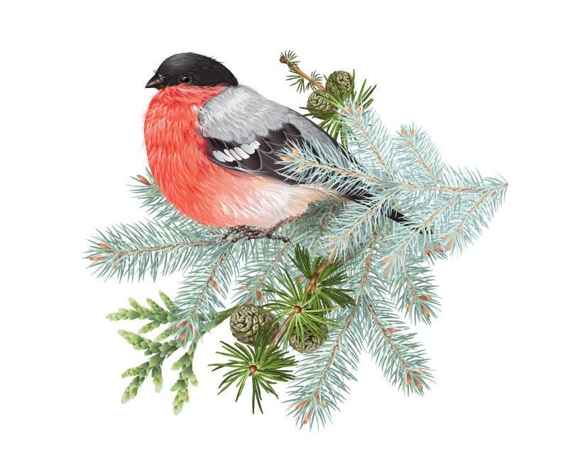 Composición del invierno del piñonero ilustración del vector