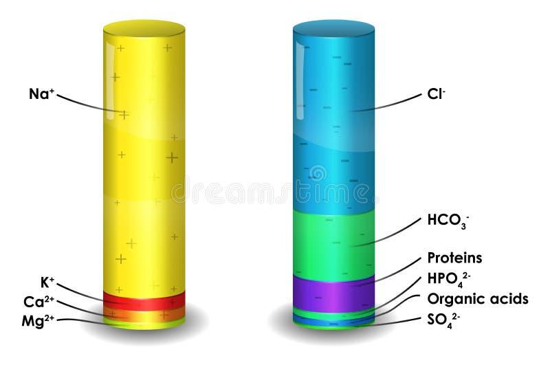 Composición del ion del plasma de sangre humana stock de ilustración