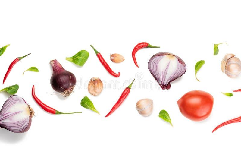 Composición del modelo de la comida con las verduras frescas crudas en el fondo blanco ilustración del vector