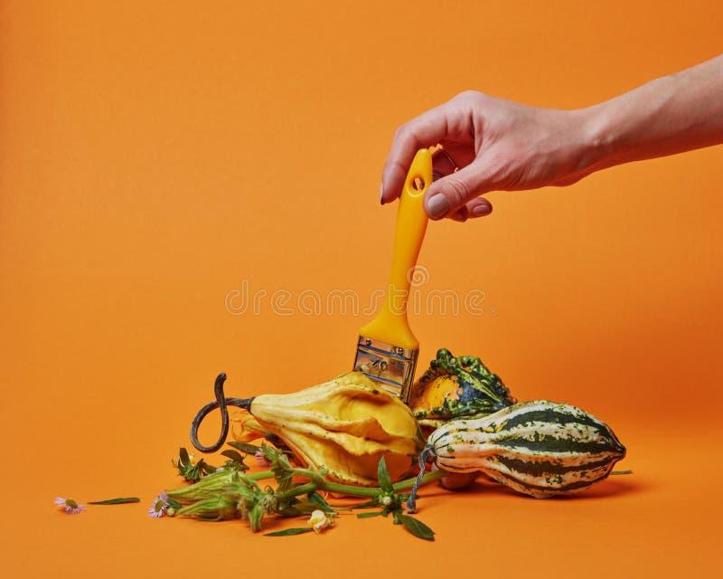 Composición del otoño con un cepillo y las calabazas foto de archivo libre de regalías